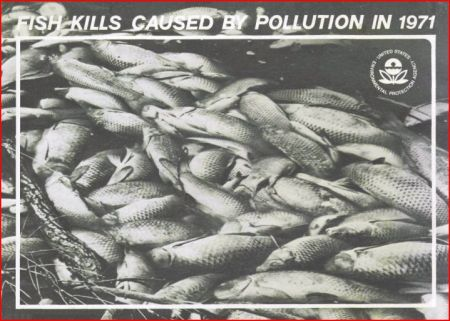 Cover of 1971 EPA publication, Fish Kills Caused By Pollution in 1971.