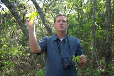 David Hurt shows poison ivy and Virginia creeper, Dogwood Canyon, Texas