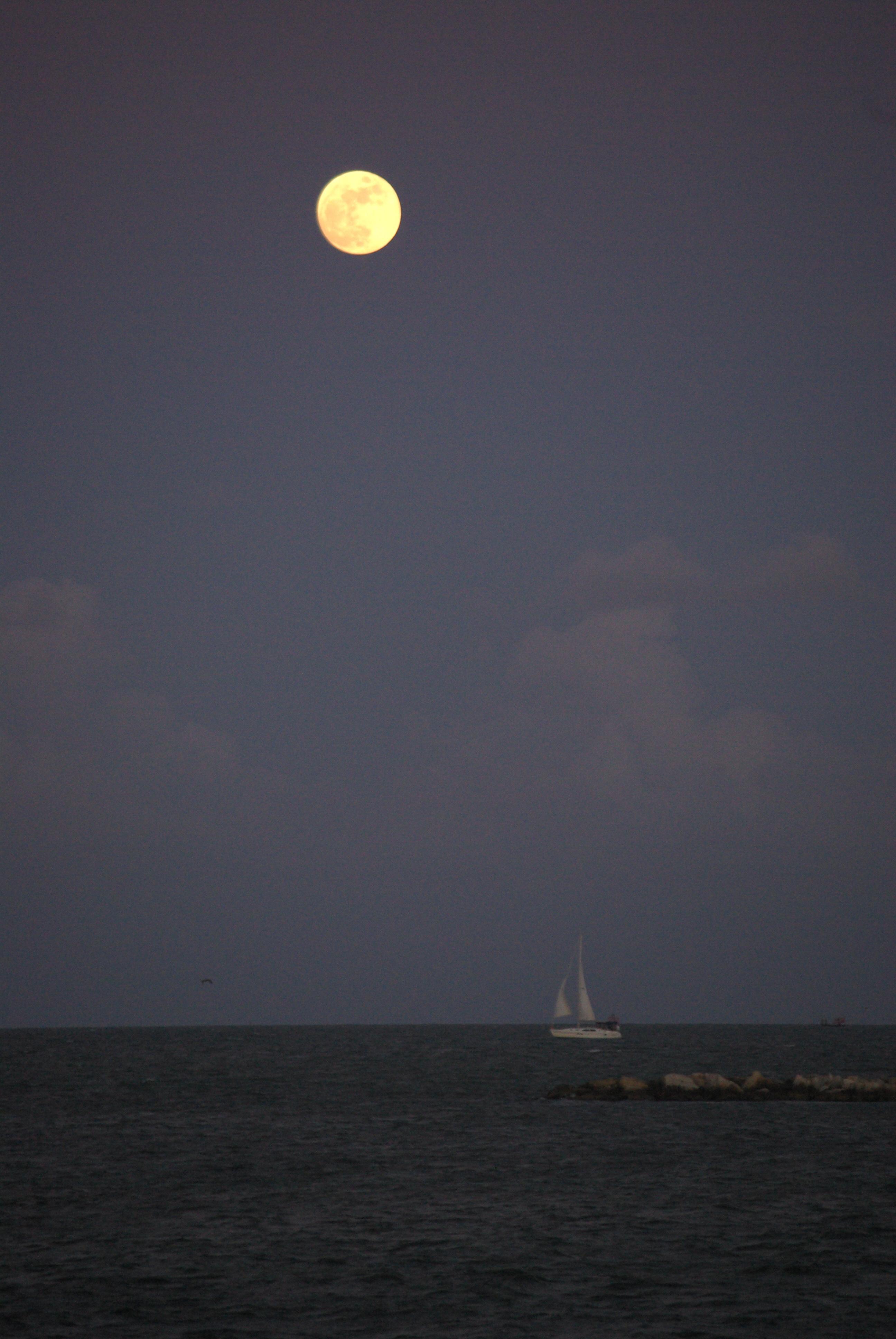 Moon over Corpus Christi Bay, June 25, 2010 - photo by Ed Darrell