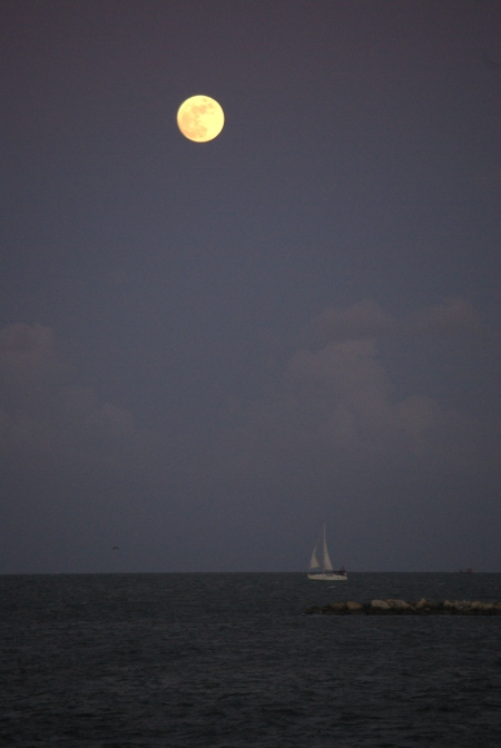 Moon over Corpus Christi Bay, June 25, 2010 - photo by Ed Darrell