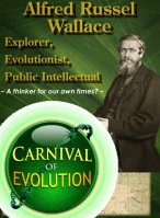 Carnival of Evolution #67 at Genealogical World of Phylogenetic Networks - Alfred Russel Wallace  Centenary Edition