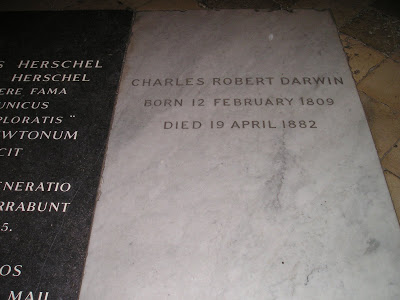 The grave of Charles Darwin, in the Nave of the Collegiate Chapel at Westminster Abbey. Darwin is interred near Sir Isaac Newton. Bishop James Ussher is interred in the St. Paul's Chapel, a few dozen yards away. Photo from Laurence Moran's The Sandwalk Blog