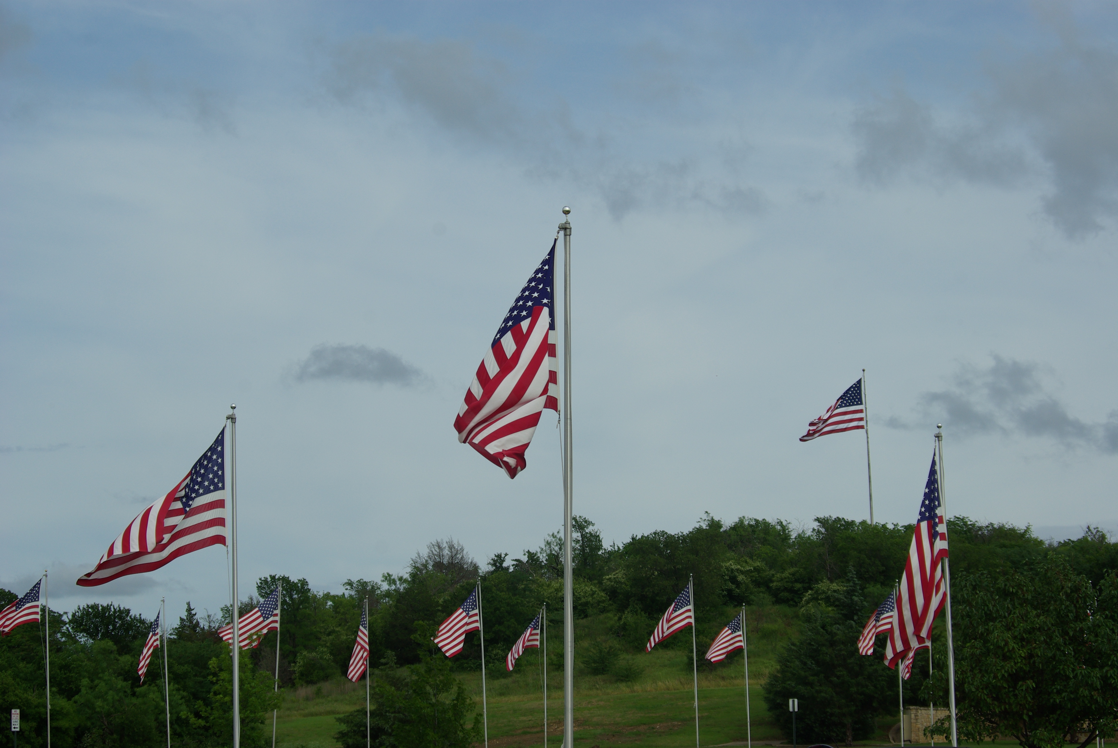 U.S. flags flying at the Dallas-Fort Worth National Cemetery, for Memorial Day 2015. Photo by Ed Darrell. Please use.