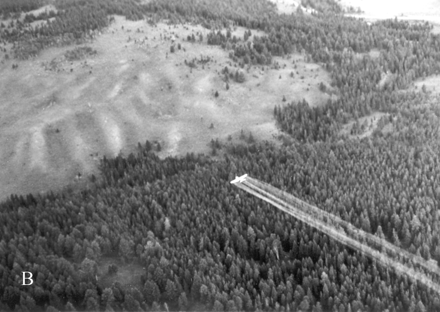 Caption from WFIWC: Stearman spraying DDT over the western edge of Blacktail Plateau near Lava Creek in Yellowstone N.P. during one of the last spruce budworm control projects in the Park, July 1955. The ensuing controversy over environmental damage done by this insecticide hastened the adoption of a more passive management policy in the 1960's regarding forest insects in the Park (Furniss & Renkin 2003, Figure 17B). Coeur d'Alene FIL photo from Wester Forest Insect Work Conference (WFIWC) archives. - See more at: http://www.wfiwc.org/history/photos/yellowstone#sthash.hPfPuWGI.dpuf