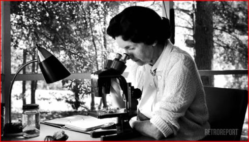 "Rachel Carson at a microscope, American Experience/RetroReport image. Did Carson's work cause an increase in malaria? Is she to blame for continued malaria deaths? No, answers a short film bonus to ""Rachel Carson,"" the 2017 PBS film."