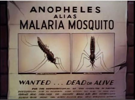 "Still photo from Walt Disney's ""Winged Scourge,"" a wanted poster for ""Anopheles, alias Malaria Mosquito."" The 1943 film short suggested ways to cut populations of the malaria-spreading mosquitoes of the genus Anopheles. Disease prevention would aid the war effort in 1943, it was hoped."