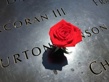 Rose honoring a victim at the 9/11 Memorial, Manhattan, New York City. (Photo by Ed Darrell)