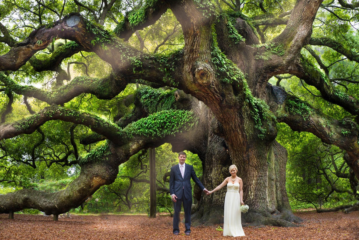 Angel Oak: Advertisement highlights a grand American resource